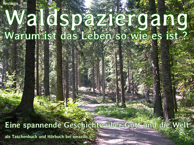 Das Buch 'Waldspaziergang